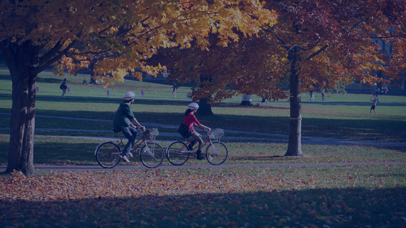 "<h4>Sustainable transportation</h4> <h5>Expanding existing transit services and developing new transportation options, like accessible biking, are key to reduce campus dependency on fossil fuels. <a href=""energy-101/sustainable-transportation""><u>Learn more.</u></a></h5> <em>Cornell Chronicle</em>"